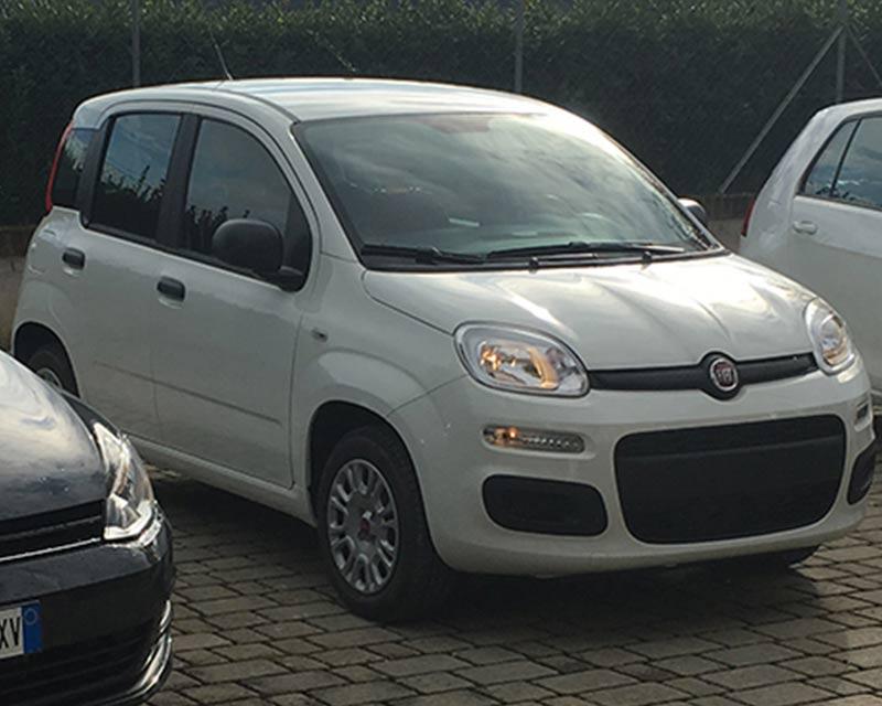 Fiat Panda Noleggio F.lli Zallocco